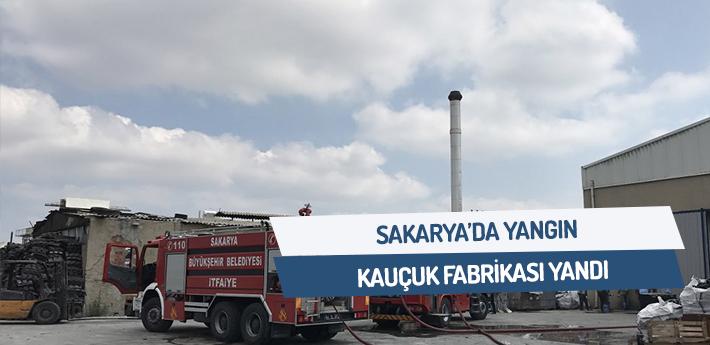 Sakarya'da yangın