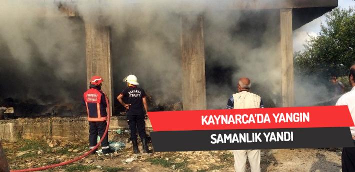 Kaynarca'da yangın,samanlık yandı