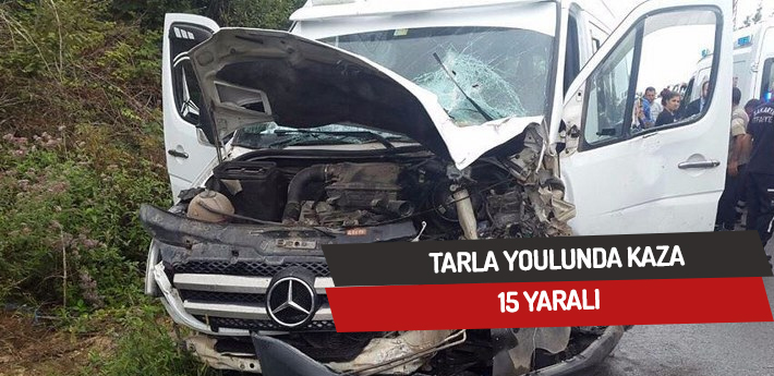 Tarla yolunda kaza,15 yaralı