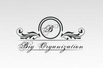 Big Organization