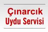 Çınarcık Uydu ve Çanak Anteni Servisi