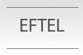 Eftel Group