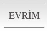 Evrim Mutfak