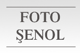 Foto Şenol