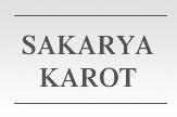 Sakarya Karot